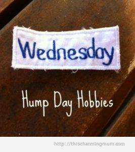 On Hump Day Hobbies – who's up for a guest post?