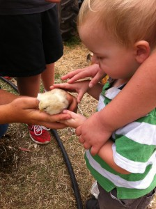 Camp fires, creeks and comfort zones: school holiday farm fun!