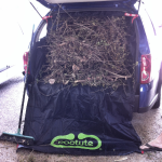 Car care Bootute garden waste clean up